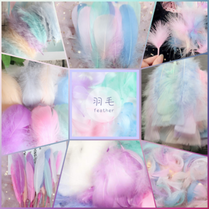 Feathers, Pastel Colors