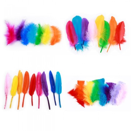 Feathers Mix Colors
