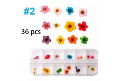 Mixed Natural Dried Flowers for Resin Craft, Nail Art (free Box)