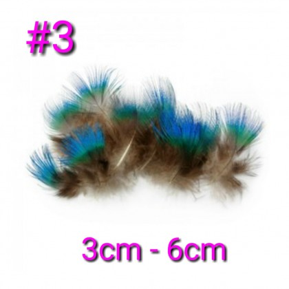Feathers For Dreamcatcher, Bulu Ayam DIY, Special Feathers.