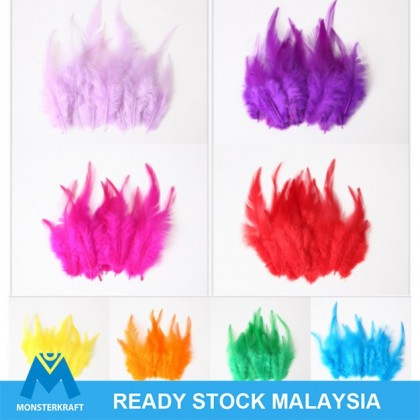 Feathers (Bulu) for making dreamcatcher or crafting, Natural Bulu from Rooster